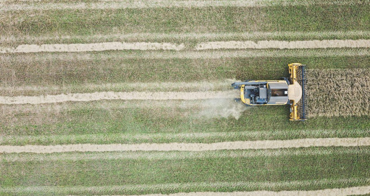 Qu'est-ce que l'agriculture intensive ?