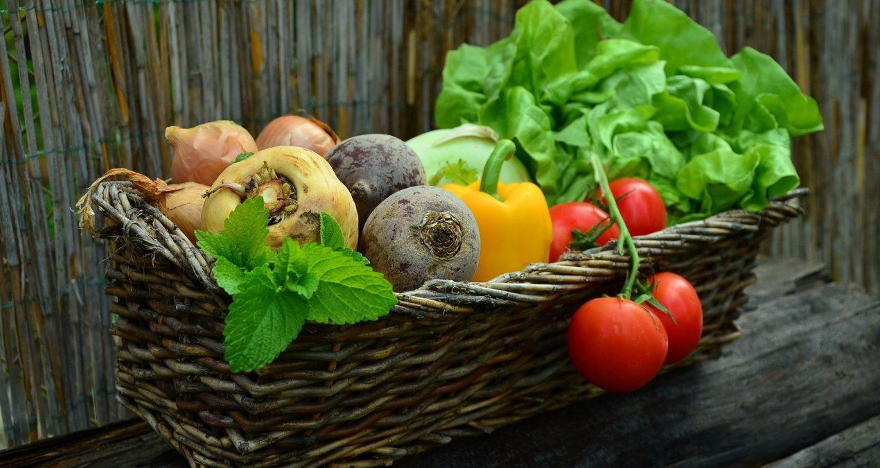 Journée de la gastronomie durable : définition du slow-food!
